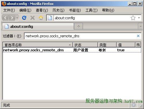 Firefox远程域名解析设置